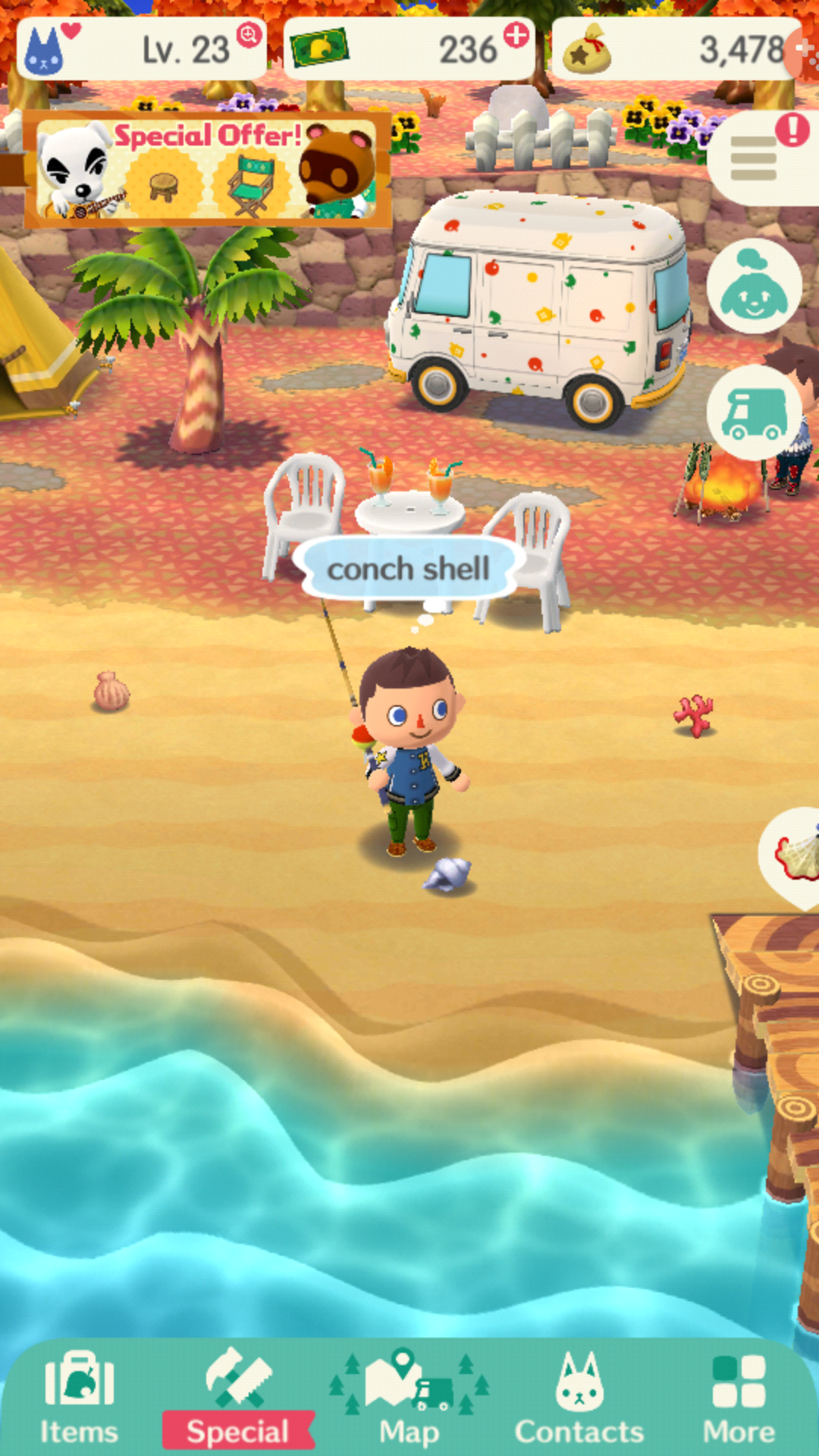 conchas en la playa de ac pocket camp