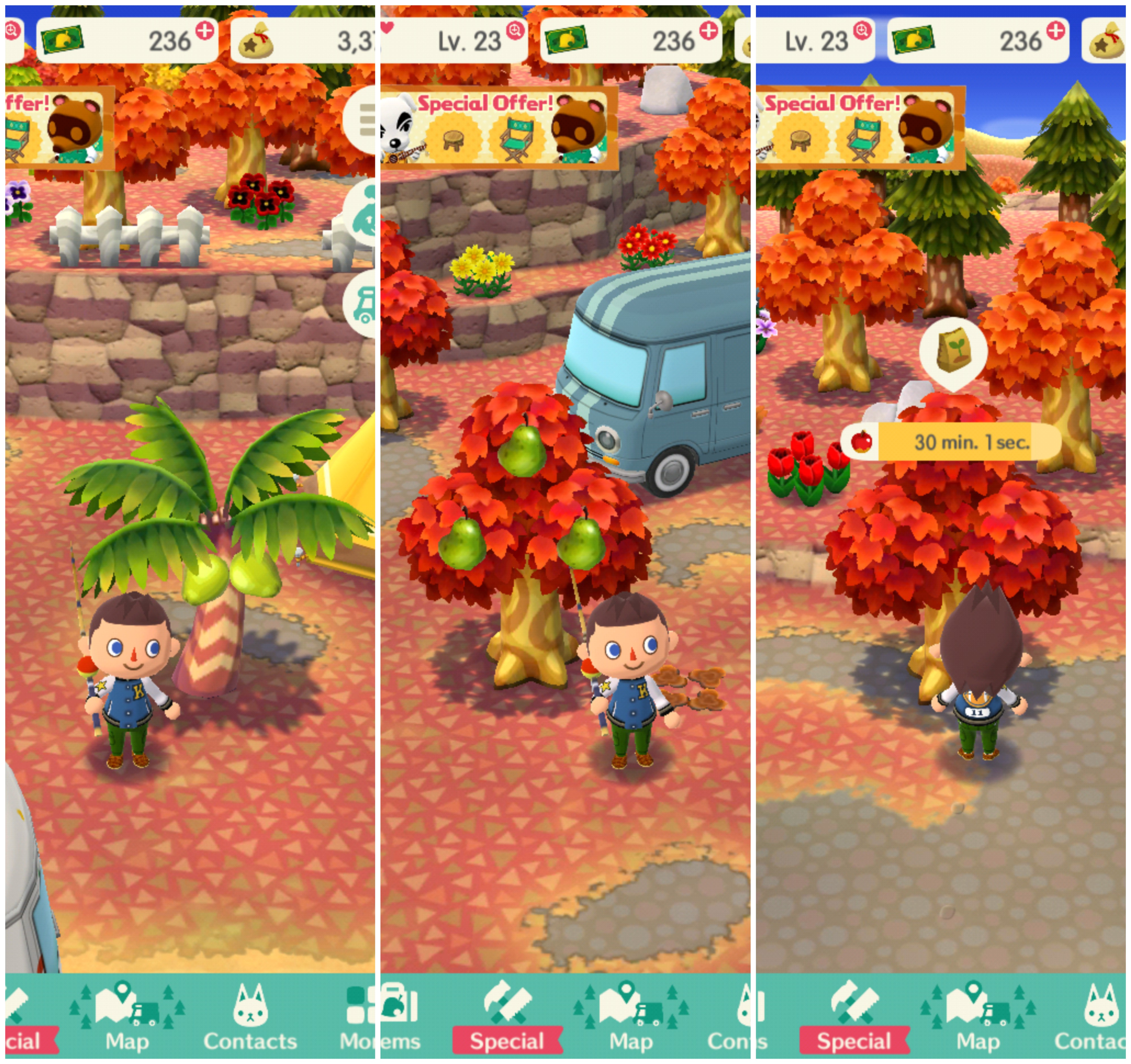 Todas las frutas en Animal Crossing: Pocket Camp
